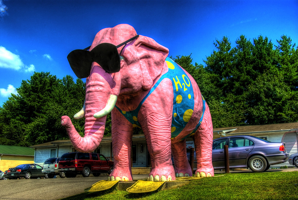 Ellie, Pink Elephant, Cookeville, TN