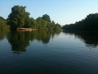 iPhone - Kayaking Trip on Town Lake | by jrandallc