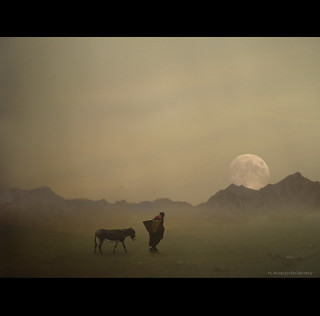Pilgrim with Donkey | by h.koppdelaney