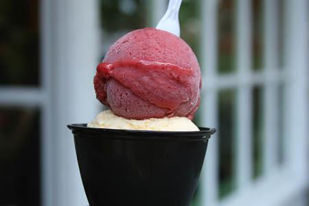 Ice cream at the Bent Spoon