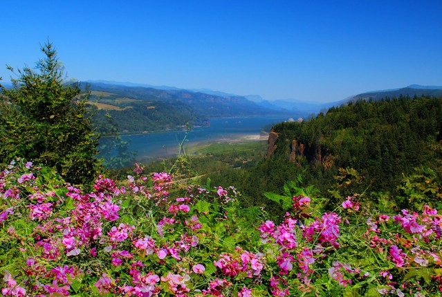 Columbia River Gorge from Portland Women's Forum State