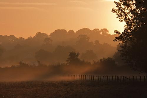 sunrise dorset blackmorevale childokeford netmeadfield