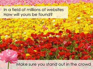 In a Field of Websites, Will Yours Stand Out? | by FindYourSearch
