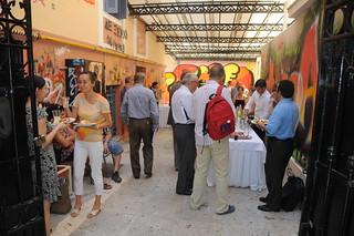 Social Sciences Conference, Athens, 2009