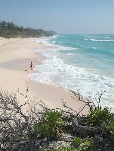 pink sea art beach topf25 girl photo sand long jonathan turquoise charles bikini bermuda warwick jonathancharles