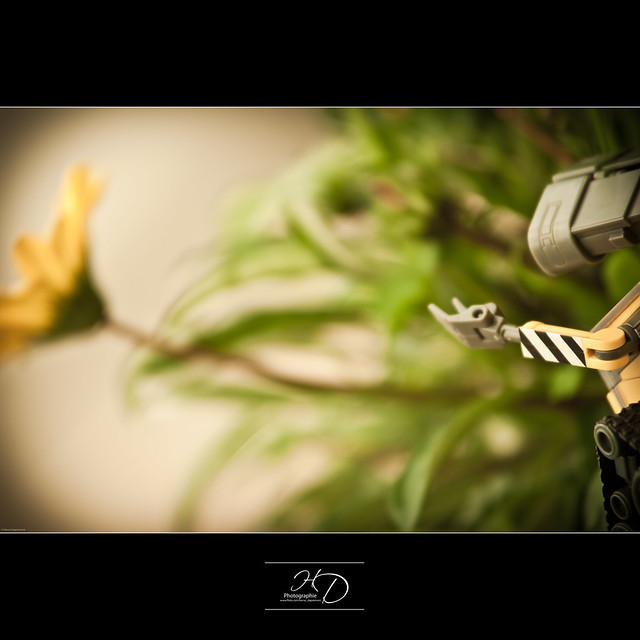 Wall.E - This Flower is very Far ...