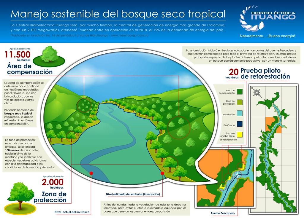Manejo Sostenible Del Bosque Seco Tropical Bst Infografi Flickr