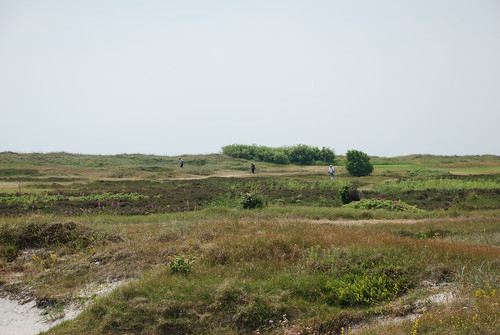 Falsterbo 2010 056