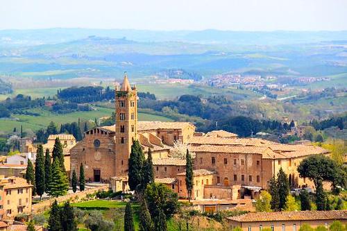 Santa Maria dei Servi, Siena   by Vive Toscana