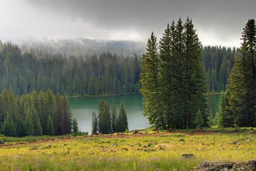 trees mist lake fog sunrise landscape colorado reservoir fir grandmesa