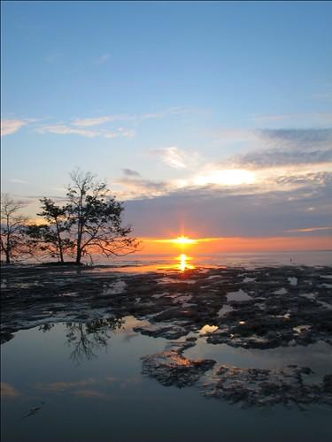 sunset reflection tree malaysia johor muar tanjung ketapang bandarmaharani
