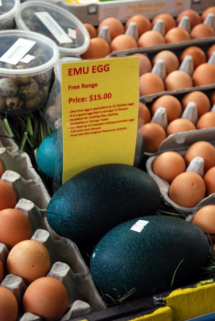 Emu Egg - Eggs Plus AUD15
