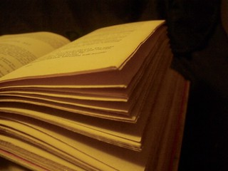 open book pages   by Jo Naylor
