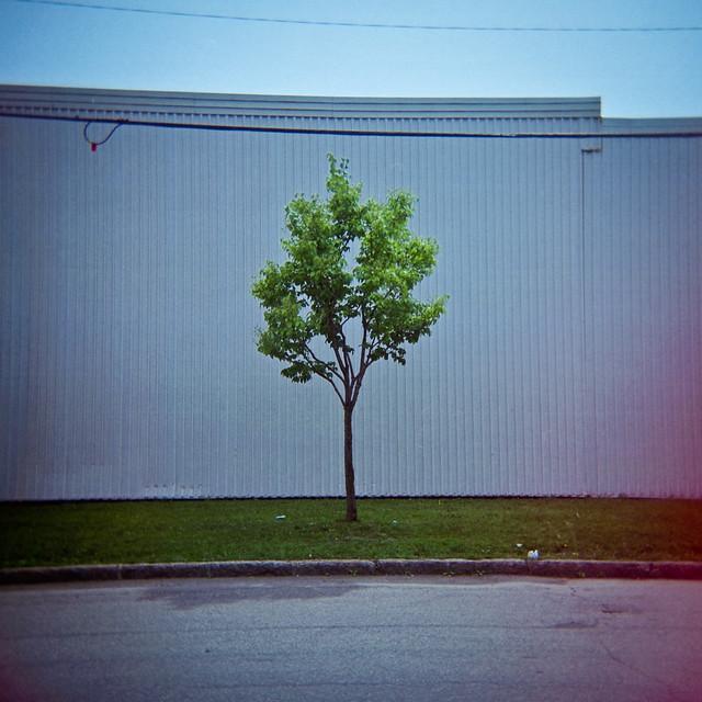 Holga & la solitude