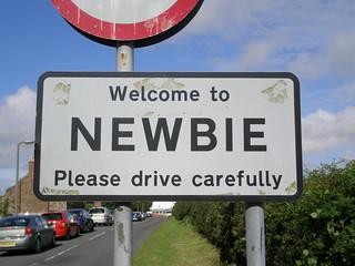 Welcome to Newbie | by I like