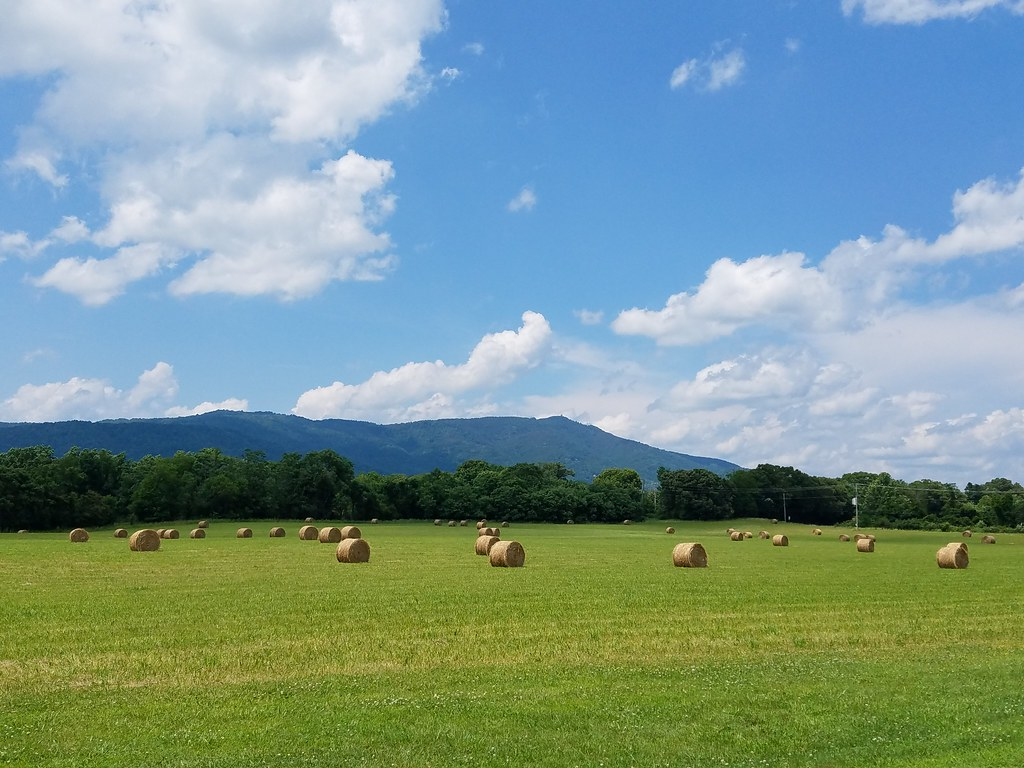 Hay Rolls Tobaccow Row Mountain Amherst County Virgini