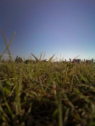 sky net grass goal soccer bored 365 practice edina soccerpractice bugseyeview project365
