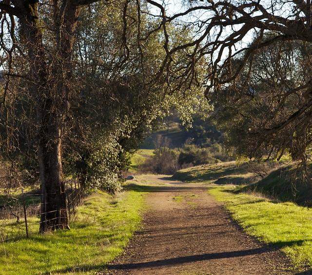 27  A trail