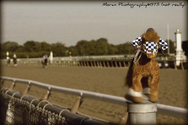 The Long Lost Photo of Secretariat's Belmont Stakes-31 Lengths :)