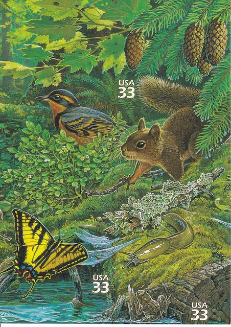 USPS Pacific Coast Rain Forest Stamp Sheet Design Postcard