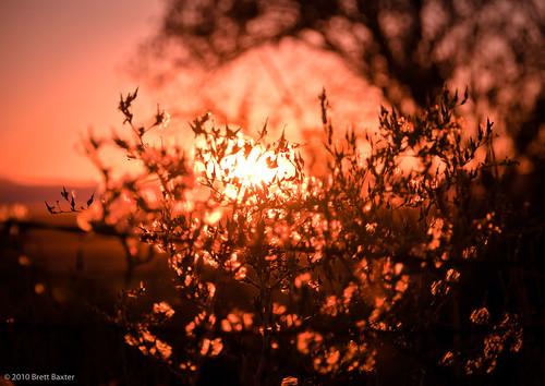 pink blue sunset orange color brettbaxterphotography
