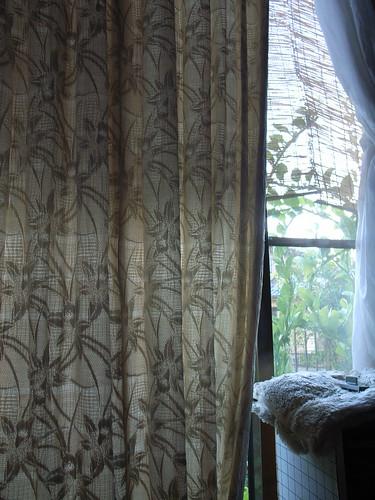 Curtain   by matsuyuki