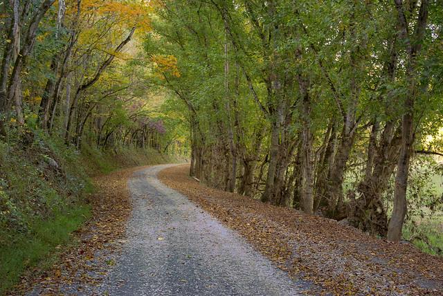 Spring Creek rd, Jackson Co, TN