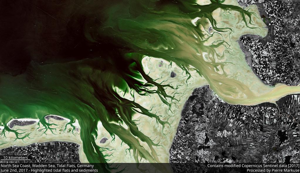 North_Sea_Coast_S2A_tidal_flats_highlighted_crop_10