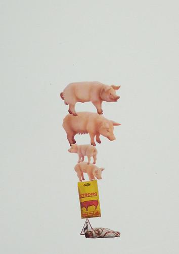 """Misako Inaoka """"Strong Pigs"""""""