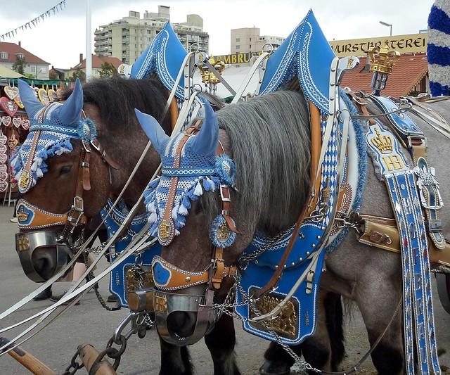 Horses on the Oktoberfest III