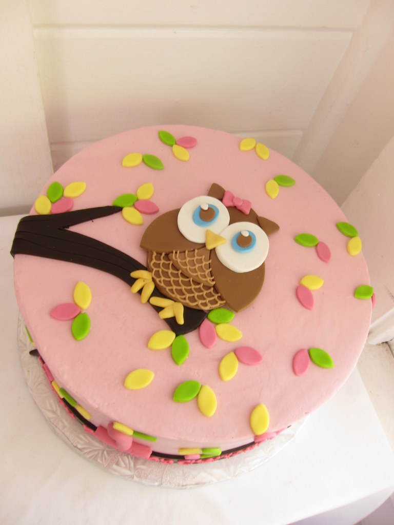 Pleasing Owl Birthday Cake Polkadots Olga Flickr Funny Birthday Cards Online Fluifree Goldxyz