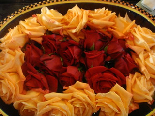 Christmas rose   by GaryAScott