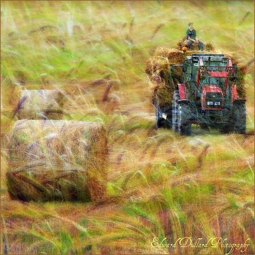 tractor nature landscape farming harvest eire textures impressionism hay agriculture photoart irlanda ierland edwarddullardphotographykilkennyireland