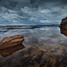 Image: Narrabeen Reflections