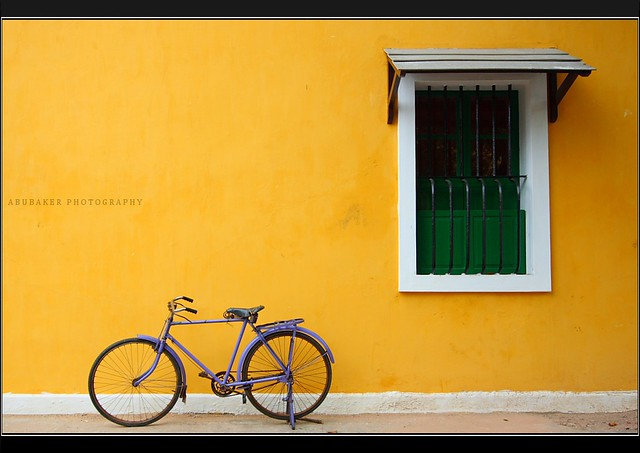 Window and the Bicycle