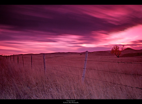 longexposure nightphotography autumn trees sunset sky fall night clouds southdakota fence landscape interestingness interesting scenic explore prairie autumnsunset prairiesunset explored longexposurephotography sunsetphotography sceniclandscape fallsunset beautifulphotography scenicsunset kevinaker kevinakerphotography