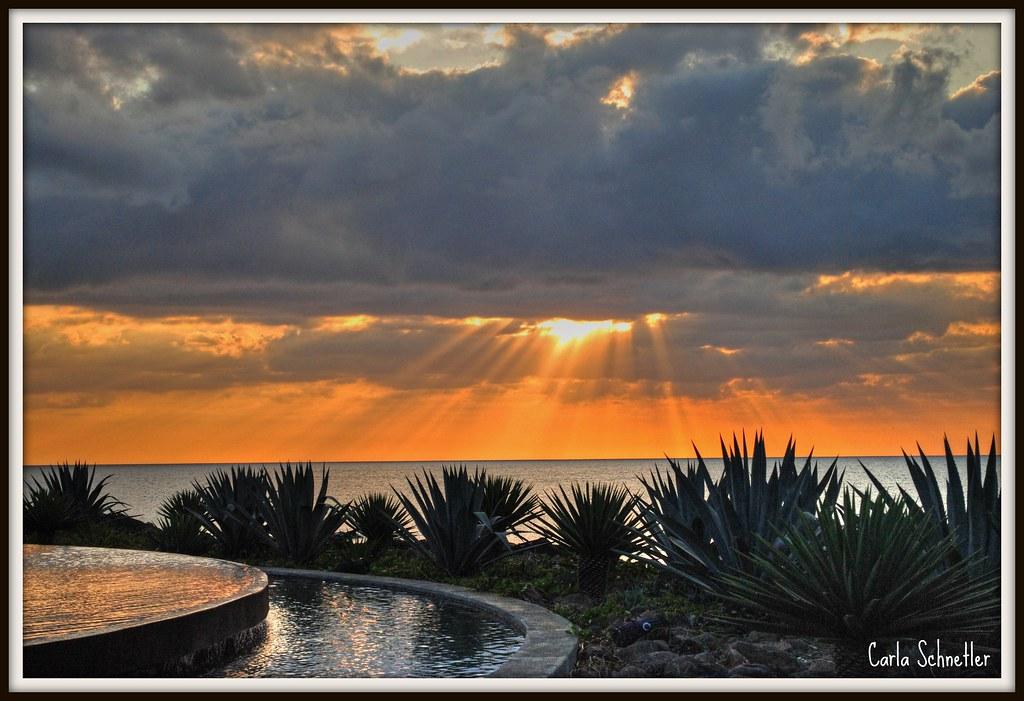La Plantation D'Albion Mauritius   Carla Schnetler   Flickr