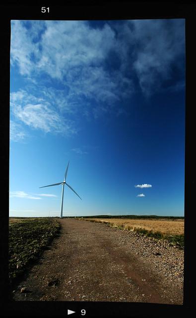 Whitelee Windfarm