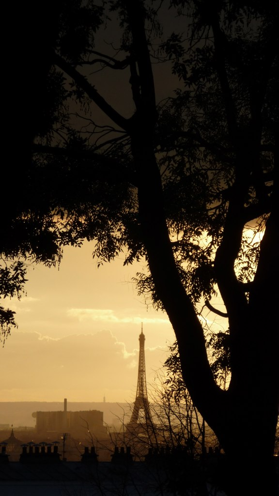 Tour Eiffel in Yellow and Black
