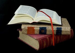 """""""...un grupo de volúmenes encuadernados ponían por su antigüedad un broche de vetustez..."""""""
