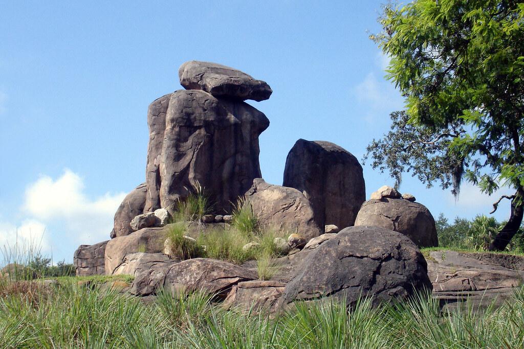 Animal Kingdom The Lion King Pride Rock There Was A Li