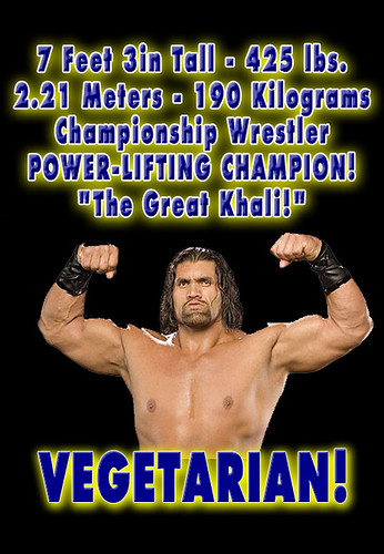 Plant Based Protein >> VEGETARIAN Bodybuilder! Massive Muscle Protein - The Great… | Flickr