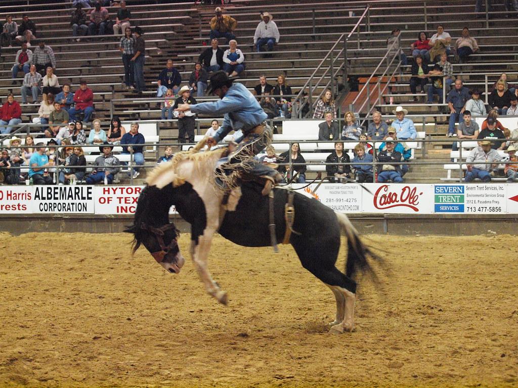 Pasadena Texas Professional Rodeo Cowboys Association Prca