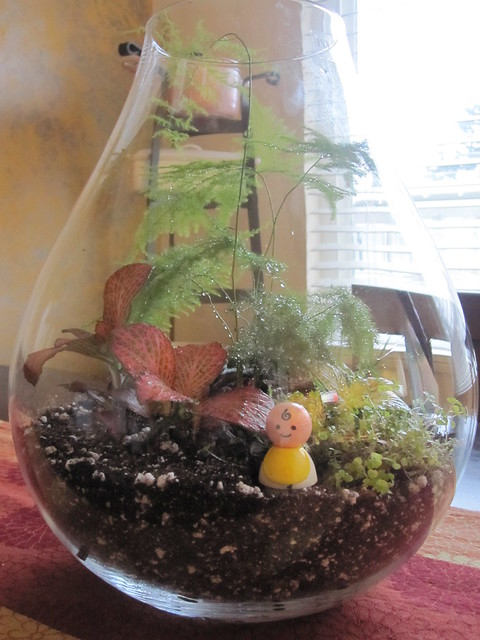 little people in a terrarium/lil baby