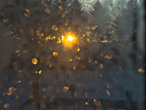 winter sun window nature sunrise geotagged nikon frost raw nef cs5 d3s nikkor2470f28 nikongp1