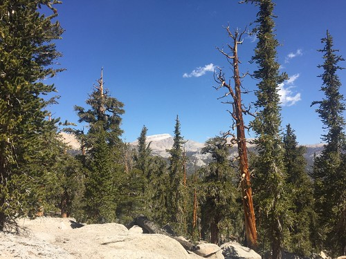 PCT: Day 57