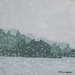 10 sNOWSTORM ON THE LAKE 1