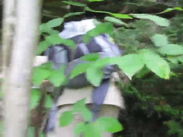 293_Catskills-Bushwhack_Sherrill