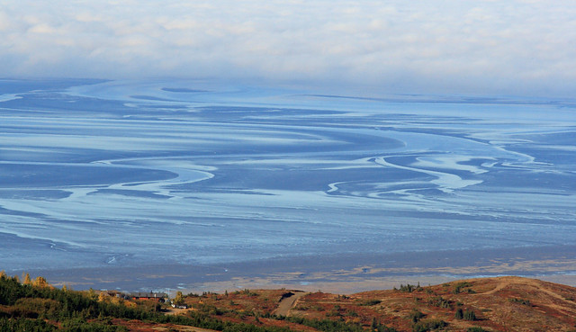 Another shot of the mudflats from Little O'Malley