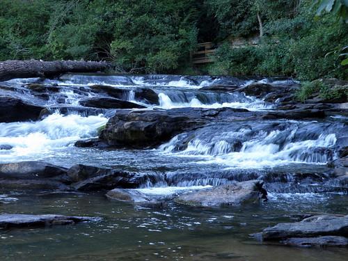 stateforest dawsonforest dawsonvillegeorgia edgeoftheworldrapids aclassivwhitewater ontheamicalolarivertrail